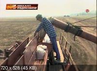 Михаил Евдокимов. Удар властью (2014) SATRip