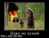 Демотиваторы '220V' 30.04.14